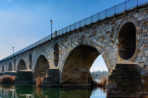 Zamora. Puente de Piedra