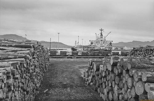 newzealand blackandwhite 35mm harbour nz southisland ilford lyttelton newzealandsouthisland ilforddelta100 lytteltonharbour