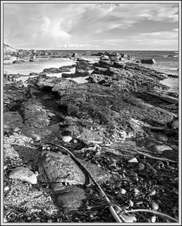 Jaggy Coastline (2) (b&w)