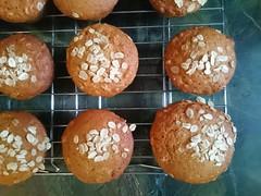 White House Honey-Oat Muffins
