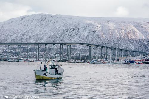 Tromssa (59)