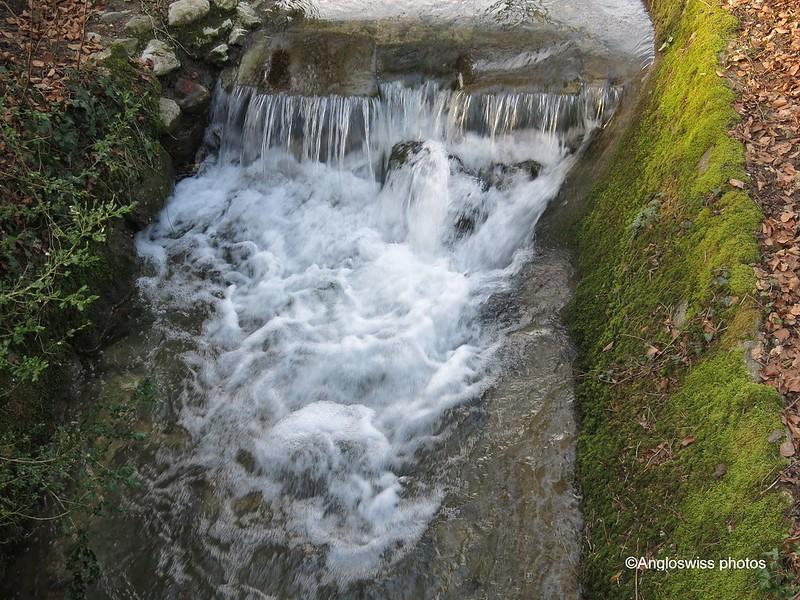 Stream, St. Kathrinen Cemetery, Solothurn