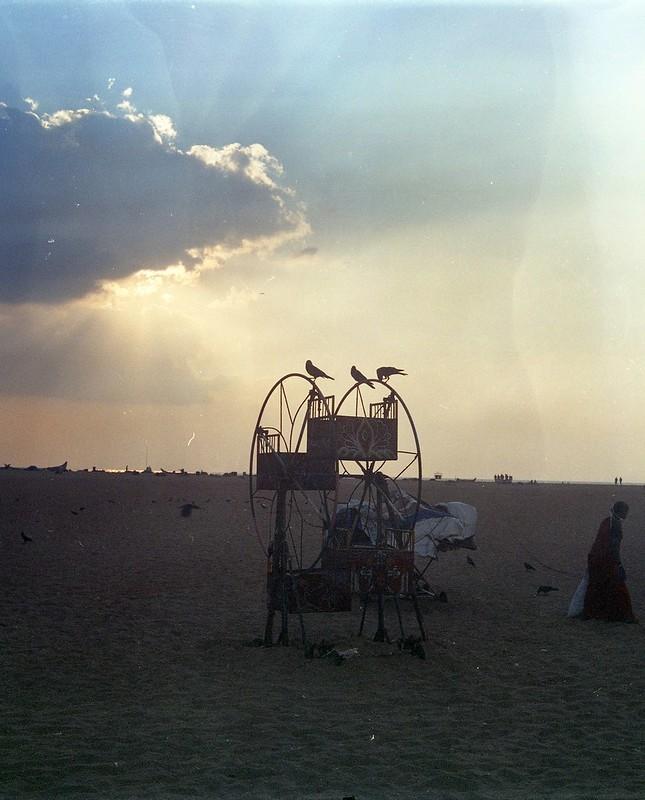 Ferris Wheel Sunbeam