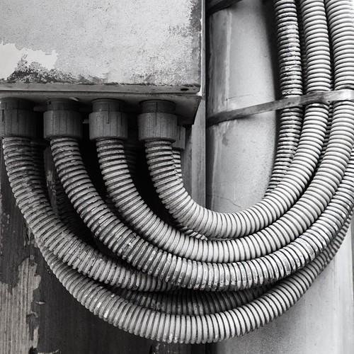 寄り添うケーブル #都電pw2015