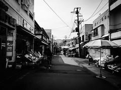Hakodate Morning Market