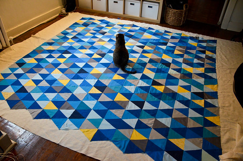 Dizzy Enjoys the Triangle Quilt Sandwich