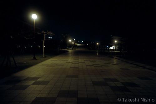 夜明け前 / predawn