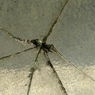 spider crack