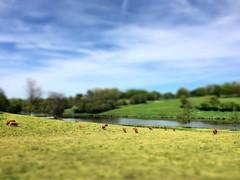 Les lacs de Haute-Charente, ça vous tente, la Charente-Limousine, ça vous taquine ! - Photo of Mazières