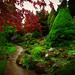 Fletcher Moss Gardens [132/365] by Nomis.