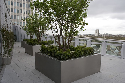 Roof terrace at 62 Buckingham Gate