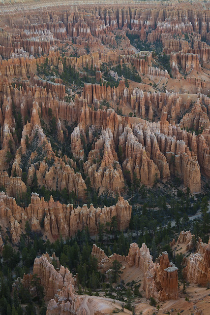Bryce Day 2 (2 of 6)