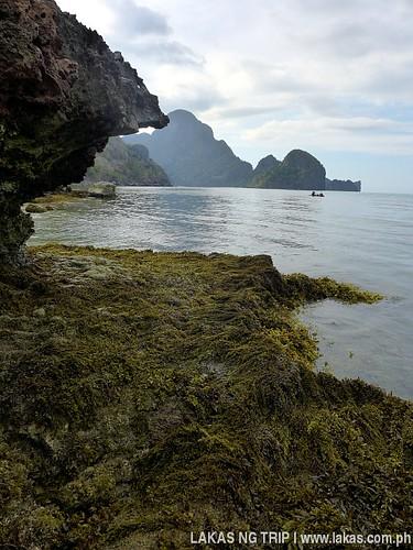 Life of Pi - Death Island moment of Yakusan Beach in El Nido, Palawan