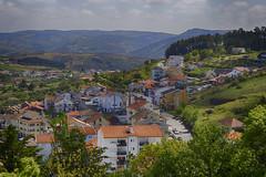007429 - Braganza