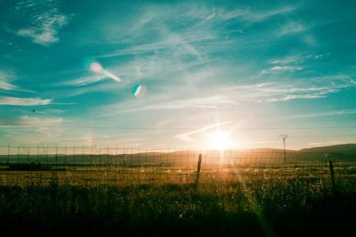 sunset sky sun sol colors del de photography golden algeria soleil spring tramonto day shot great coucher bleu ciel photograph hour end algerie puesta printemps lumieres الجزائر oranage lumiéres printem chlef الشلف