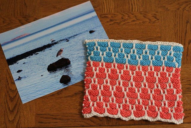 photo & dishcloth