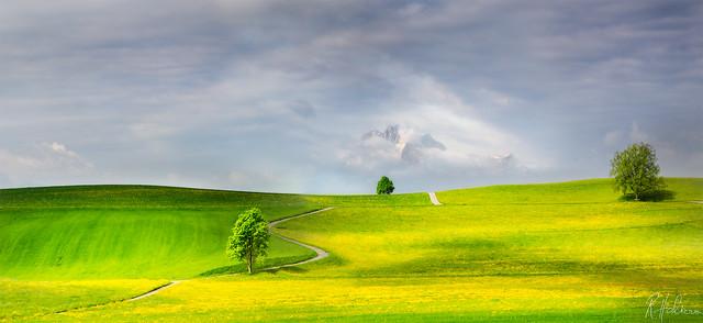Robin Halioua - Road to Heaven