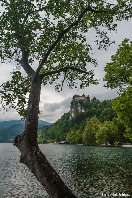 Lago Bled-21