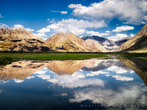 Reflection. Nubra Valley, Ladakh (India)