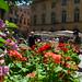 Aix en Provence Flower Market 07