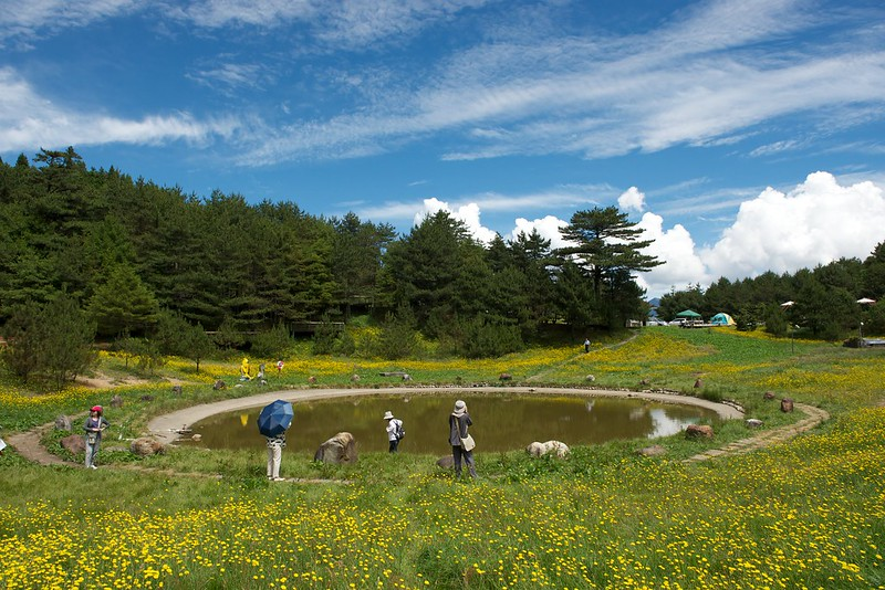 福壽山農場露營區1