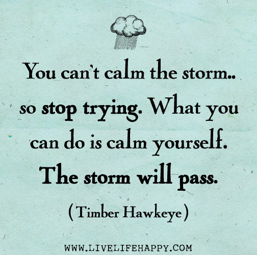 You can't calm the storm... so stop trying. What you can do is calm yourself. The storm will pass. -Timber Hawkeye