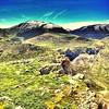 La Sierra de los Cameros #larioja #lariojaapetece #nature #naturaleza #Travel #mountains #montañas #españa #spain #trekking #hiking #picoftheday #mindfulness #meditation #photooftheday #peace #peaceplaces #trailsforpeace #ecology #landscape #landscapes #b