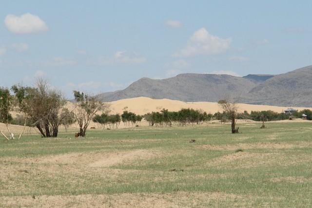 Las gigantestas dunas parecen más pequeñas de lo que son, pero se extiendes varios cientos de kilómetros El entorno sagrado de las dunas Mongol Els de Mongolia - 9056694165 64d1e78036 z - El entorno sagrado de las dunas Mongol Els de Mongolia
