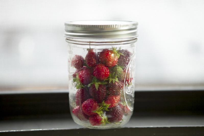 Strawberry PickingIMG_2966