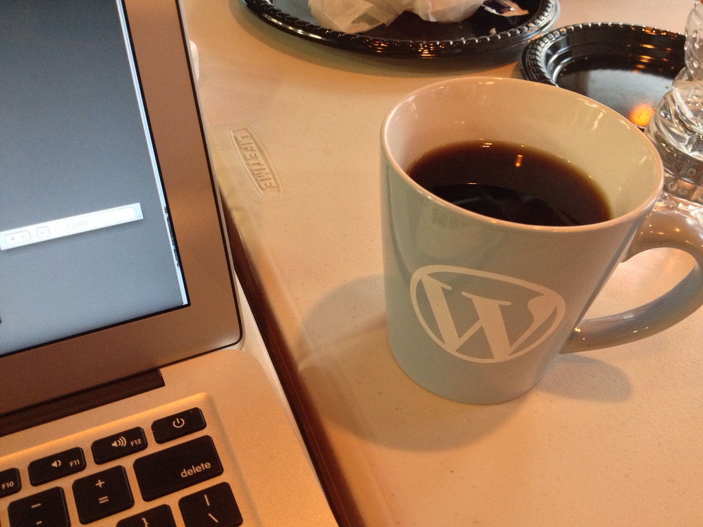 WordPress Mug
