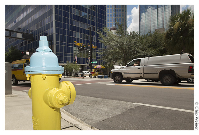 Fire hydrant across from Tampa Police Station 08-09-13