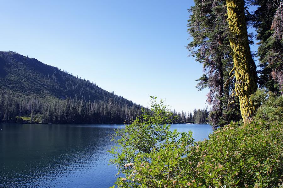 Гора Шаста (Маунт Шаста) - авторские путешествия Kartazon Dream