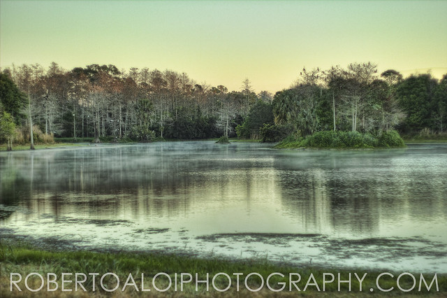 Riverbend Landscape 2/14/15