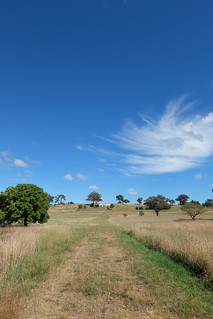 Path through a paddock leading to a house in the far distance. Beautiful blue sky above.