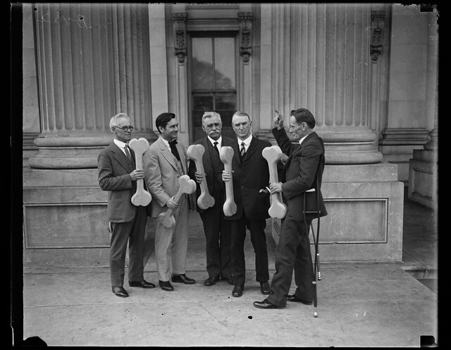 "Identified! [Group of men holding bones, probably connected to ""Bone dry"" support of prohibition; William D. Upshaw, proponent of temperance movement, at right. U.S. Capitol, Washington, D.C.]  (LOC)"