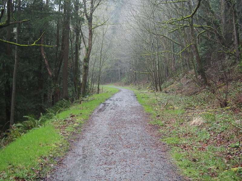 Issaquah–Preston Trail: OLYMPUS DIGITAL CAMERA