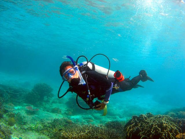 Open Water Divers_Tioman Island_Malaysia.jpg
