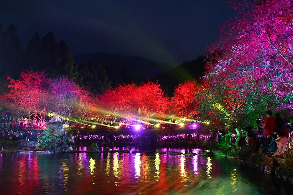 九族櫻花祭 (109)