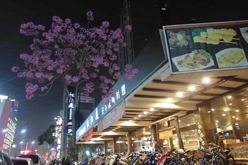 高雄松江庭吃到飽日本料理餐廳的寬敞環境與服務報導-旗艦店