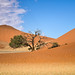 NAMIBIA by gggreeny