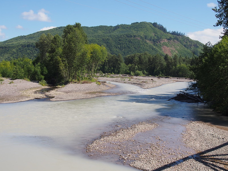 Nisqually River: Near where the borders between Pierce/Thurston, Pierce/Lewis, and Lewis/Thurston counties all converge.