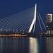 Rotterdam - Erasmusbrücke by Jörgenshaus