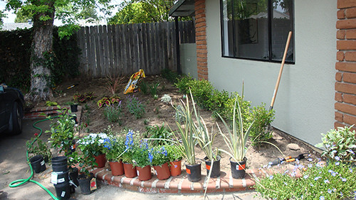 SG Exterior landscaping