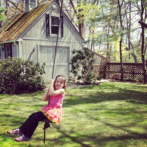 Tree swing in a perfect New England yard on a perfect Spring day.