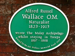 Photo of Alfred Russel Wallace green plaque