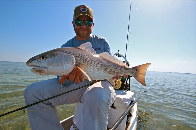 Keys Redfish
