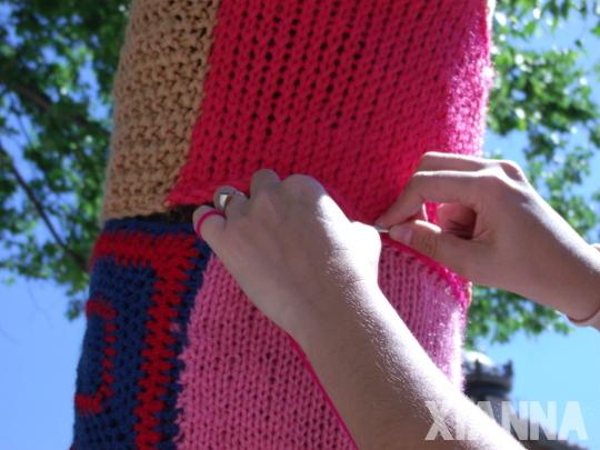 Mi cuadro de lana rebelde