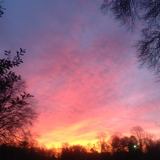 Good morning! #sunrise in #NC #nofilter #blue #pink #orange #colors #mothernature #skies #instadaily #instagood