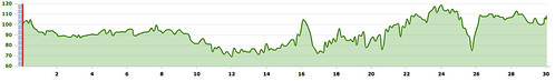 Around The Bay 30K Course Profile