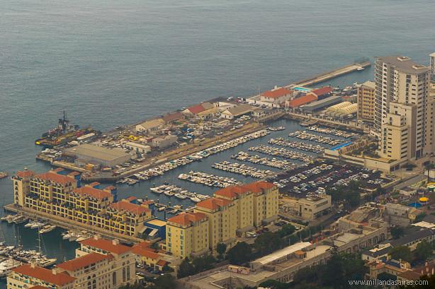 Peñon de Gibraltar (7)